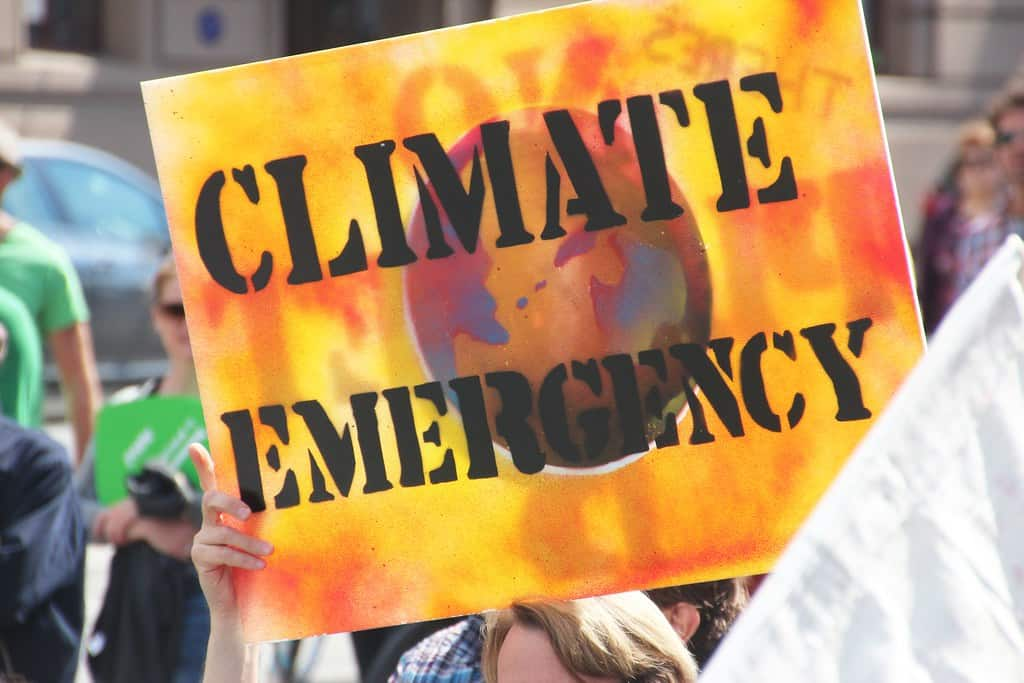 SOS Climate: the social side of the crisis
